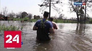 Наводнение в Хабаровске: спасатели эвакуируют жителей, пик паводка придется на середину августа - …