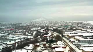 По Тюленина
