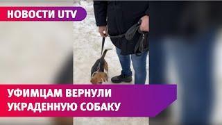 Полицейские вернули уфимцам украденную собаку