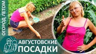 ☘ Что посадить в августе | Огород летом