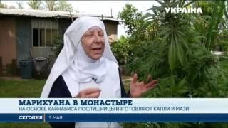 В Калифорнии монахини выращивают и продают марихуану