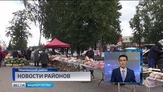 Новости районов: первая сельхозярмарка в Чишмах и подготовка к переписи в Хайбуллах