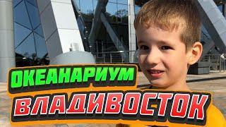 Океанариум во Владивостоке отличное место для отдыха с детьми. Влог с детьми, экскурсия.