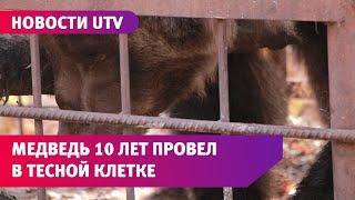 В Башкирии спасли медведя, которого 10 лет держали в тесной клетке и мучили голодом