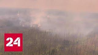 В Красноярском крае продолжают тушить лесные пожары - Россия 24