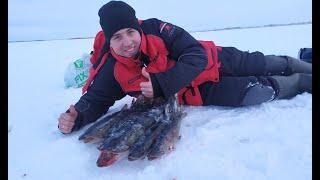 Поймали трофей! Рыбалка на жерлицы. Половили щуку. Мелькен. Зимняя рыбалка 2020.