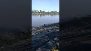 ЛОВЛЯ КРУПНЫХ ЛЕЩЕЙ на реке Белой .г .Уфа.Башкортостан