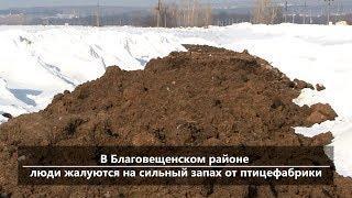 UTV. Новости центра Башкирии за 10 апреля