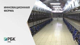 В Илишевском районе реализуется инвестпроект на 479,1 млн руб., полноценный запуск - 2020 г.