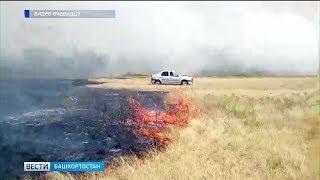 В башкирском Зауралье до 1 августа продлили действие чрезвычайного класса пожароопасности