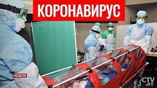Защищают ли от коронавируса вакцины против пневмонии
