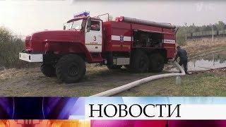 В Иркутской области продолжает расти площадь лесных пожаров.