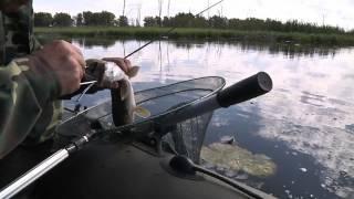 Рыбалка. Нефтекамск - Саузово. Малый Найдан.