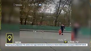 В Уфе на дорогу выпал хлеб из грузовика: видео
