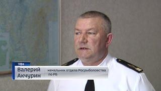 В Башкортостане вводится ограничение на промышленное рыболовство