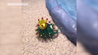 Уфимская студентка анимировала коронавирус и создала мультфильм