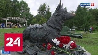 В столице отметили День фронтовой собаки - Россия 24