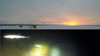Зимняя рыбалка 2019 на озере / Winter fishing 2019 on the lake