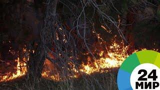 Пожарные борются с огнем в Боржомском ущелье - МИР 24