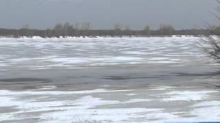 В Башкирии с 15 апреля вводятся ограничения на ловлю рыбы