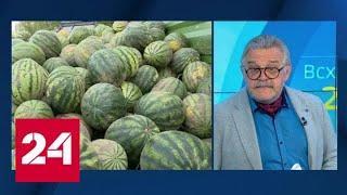 Лукашенко собрал урожай арбузов - Россия 24