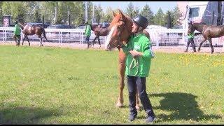 Завершился третий этап конно-спортивного турнира «Терра Башкирия»