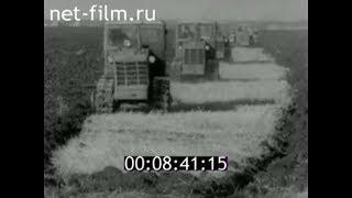 1979г. село Ургаза совхоз Зилаирский Баймакский район Башкортостан
