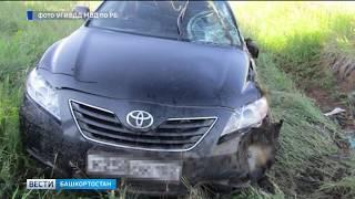 Не вписалась в поворот: в Башкирии иномарка улетела в кювет, погиб молодой парень