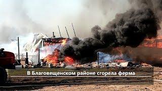 UTV. Новости центра Башкирии за 8 мая