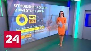 Удаленка станет официальной: россиянам могут разрешить работать из дома - Россия 24