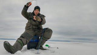 УЙДИ от толпы и будешь с рыбой!!! Зимняя рыбалка 2020. Ловля окуня на балансир.