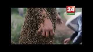 Секрет фирмы: Секреты пчеловодства