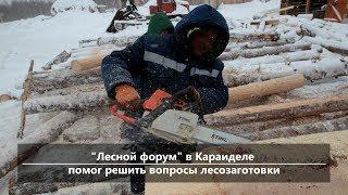 UTV. Новости севера Башкирии за 1 марта (Бирск, Мишкино, Бураево)