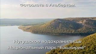 """Фотоохота с Альбертом.  Нугушское водохранилище. Национальный парк """"Башкирия""""."""
