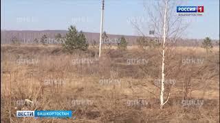 В Башкирии горят травы и кустарники