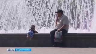 В Башкирию пришла стабильно теплая погода: прогноз на 18 июня