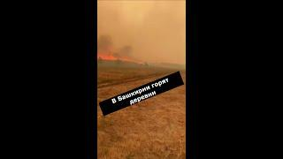 В Башкирии горят деревни. Людей просят готовиться к эвакуации, из лагеря уже вывезли 70 детей
