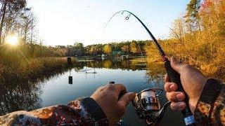 Рыбалка в Башкирии (красивая природа республики Башкортостан)