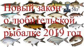 Закон о любительской рыбалке 2019/Новые правила и штрафы,таксы/Бесплатная рыбалка/