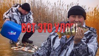 Зимняя рыбалка 2020 | Отличный клёв окуня | Готовим на природе
