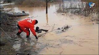 Паводок и проливные дожди осложнили ситуацию на северо-востоке области