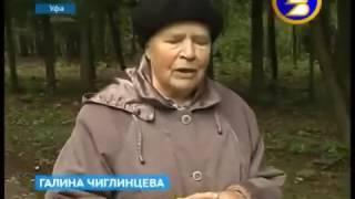 В парке лесоводов Башкирии реконструкция практически завершена