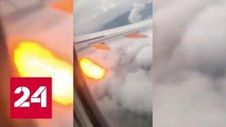Стая диких гусей вынудила пассажирский самолет совершить экстренную посадку - Россия 24