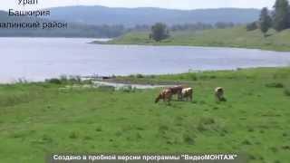 оз Карагайлы Учалинского района Башкирии