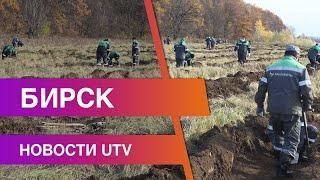 Новости Бирского района от 13.10.2020