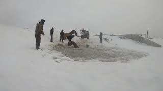 Табун лошадей провалился под лед в Башкирии
