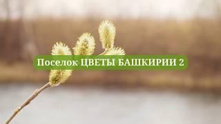 Коттеджный поселок ЦВЕТЫ БАШКИРИИ 2