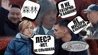 Вырубка Леса в Сибири!ПОЛИЦИЯ ПОДБРАСЫВАЕТ НАРКОТИКИ?Сибай!Еда в кредит