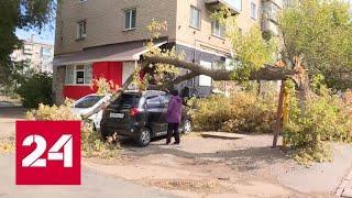 Блицкриг зимы: арктический натиск усиливается - Россия 24