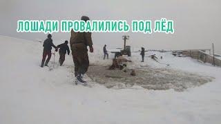 Лошади провалились под лёд. Башкортостан
